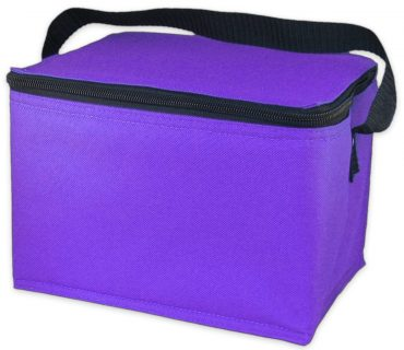 EasyLunchboxes-freezable-lunch-bags