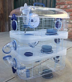 NEW-Sparkle-hamster-cages