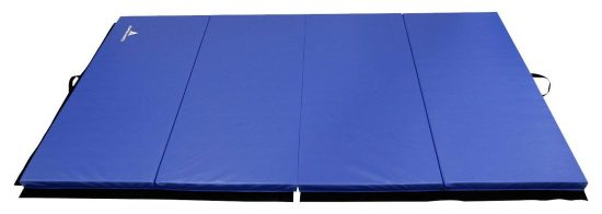 Alpha Mats Gymnastics Mats for Home