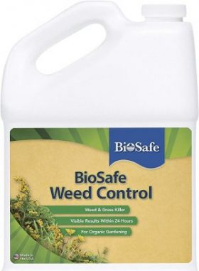 BioSafe Systems Organic Weed Killers